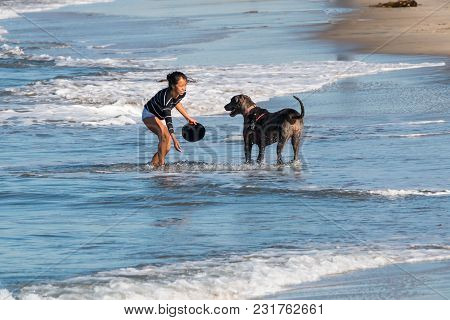 San Diego, California/usa - February 03, 2018:  An Asian American Woman Plays Fetch With Her Dog On
