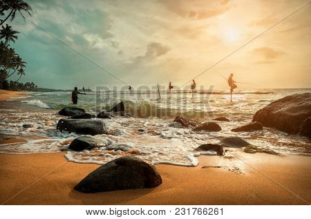 Traditional Sri Lankian sea fishermans at work under sunset sunlight. Most popular cultural icon for travellers on the beaches in Sri Lanka.