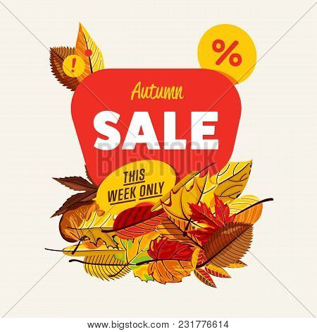 Autumn Sale Design Template, Illustration. This Week Only Banner With Colorful Leaves On White Backg