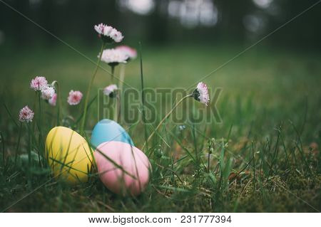 Colorful Eggs On Grass With Daisy Flowers. Happy Easter Background. Selective Focus, Shallow Depth O