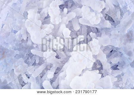 Macro Shooting Of Druzes Of Salt. Druzes Of Crystals Of Salt. Structure Of Mineral. Abstract Backgro