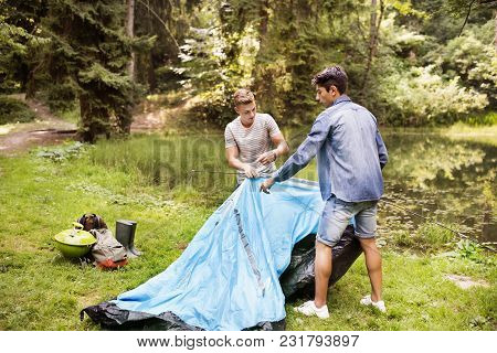 Teenage Boys Pitching A Tent At The Lake In Forest. Summer Vacation Adventure.