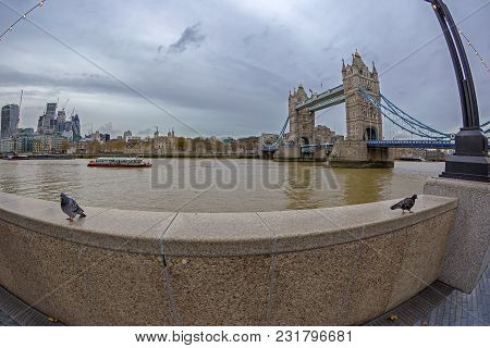 London, England - November 27, 2017: Tower Bridge, Thames River, Pigeons In Front, Boats And Buildin