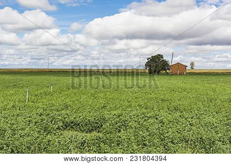 Autumn Fields In Spain Before Harvesting. Brick House For Storing Agricultural Implements