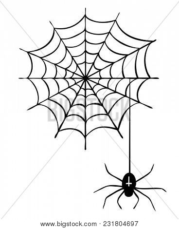 Cartoon spider in spider web as illustration for Halloween