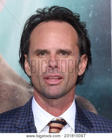 LOS ANGELES - MAR 12:  Walton Goggins arrives for the 'Tomb Raider' US Premiere on March 12, 2018 in Hollywood, CA