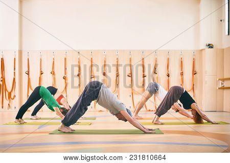 Group Of People Doing Yoga Downward Facing Dog Pose - Adho Mukha Svanasana On Mats At Studio