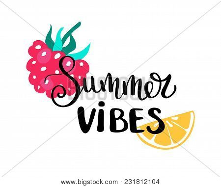 Summer Vibes. Summer Quote. Handwritten For Holiday Greeting Cards. Hand Drawn Illustration. Handwri