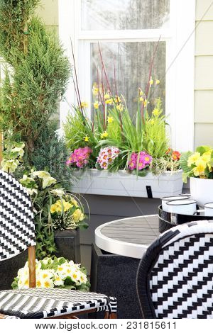 Patio furniture surrounded by primulas, pansies, daffodils and other spring flowers.