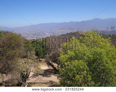 Panorama Of Mexican Countryside And Landscapes With Colorful Plants And Trees Seen From Monte Alban