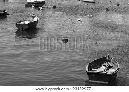 Colored Buoys Floating In Port Of Malta For Mooring Of Yachts And Boats. Black And White Picture