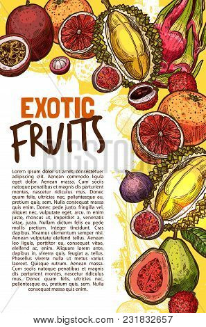 Exotic Fruits Sketch Poster Of Papaya, Grapefruit Or Tropical Passion Fruit Maracuya Or Juicy Banana