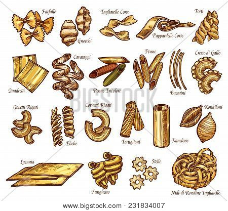 Italian Pasta Sorts Or Types Sketch Icons. Vector Isolated Set Of Farfalle, Gnocchi Or Tagliatelle A