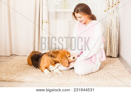 The Girl Is Training Her Dog To Lie On The Carpet