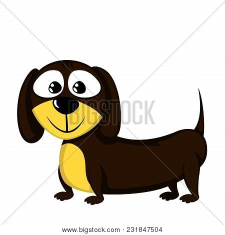 Lovely Little Dachshund (illustration Of A Male Dog)