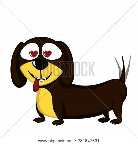 Little Dog - Lovely Little Dachshund In Love