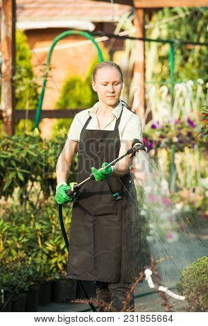 Portrait Of Gardener Watering Herbs In The Garden Shop, Sunny Day