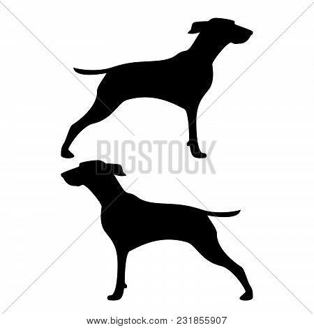 Hunter dog or gundog icon black color vector illustration flat style simple image poster