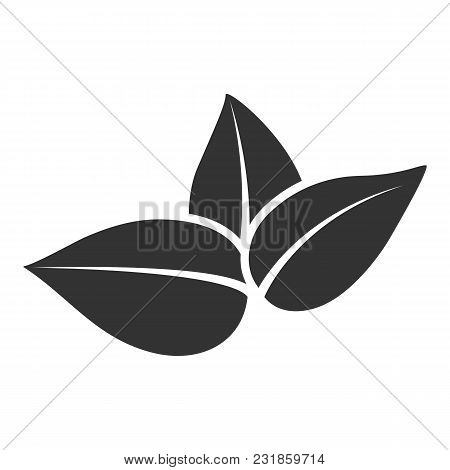 Vector Stylized Silhouette Of Tea Tree Spring Leaf Isolated On White Background. Eco Sign, Label Of