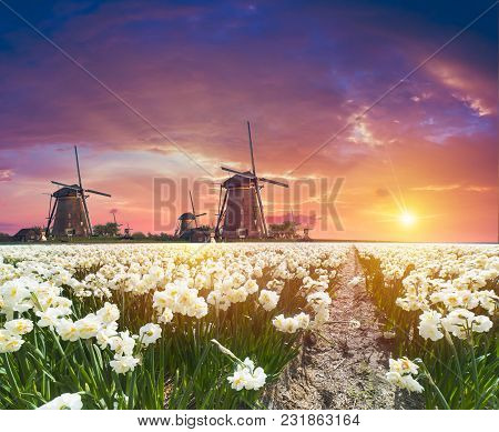 The Road Leading To The Dutch Windmills From The Canal In Rotterdam. Holland. Netherlands.
