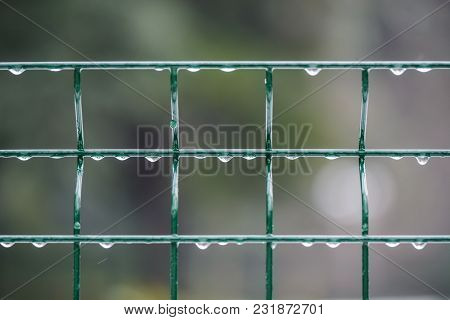 Water Drop On Iron Fence Against Blurry Background
