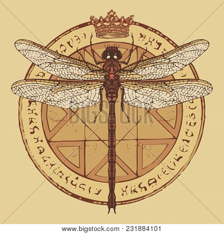 Illustration Of A Dragonfly And Crown On A Circle With An Octagonal Star, Magical Inscriptions And S