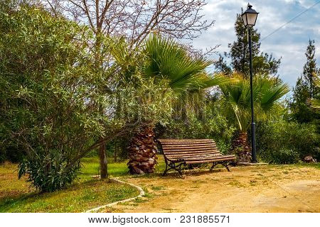 The Bench In The Park With Cloudy Sky