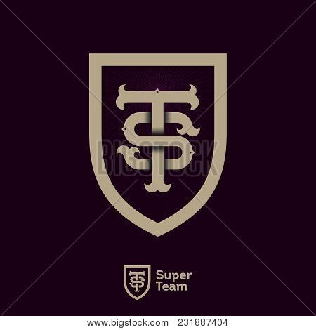 S And T Initials. S Letter And T Letter In The Shield. S And T Icons. Super Team Logo. Sport Team Em