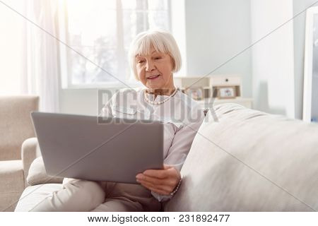 Experienced Businesswoman. Pleasant Upbeat Elderly Woman Sitting On The Sofa And Reading A Business