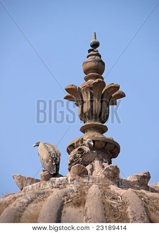Two Vultures Building Nest On Top Of Dome Of Jehanghir Mahal In India's Orchha.