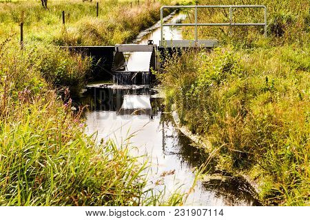 Bog Of Ruebke - In The South Of Hamburg In Germany You Will Find A Big Bog The National Reserve Of `