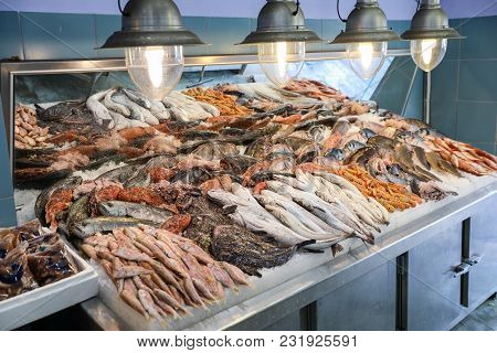 Variety Of Sea Fishes On The Counter In A Greek Fish Shop. Horizontal.