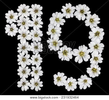 Arabic Numeral 19, Nineteen, One, Nine, From White Flowers Of Cerastium Tomentosum, Isolated On Blac