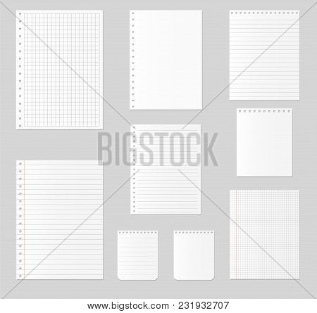 Notebook Paper Set. Different Sheets Of Paper. Vector Illustration