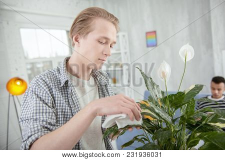 My Precious. Handsome Pretty Young Man Taking Care Of Plant While Touching It And Staring Down