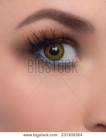 Elegance Close-up Of Beautiful Female Eye With Fashion Eye Shadow And Eyeliner. Macro Shot Of Woman'