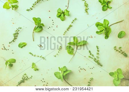 Flat-lay Pattern Of Fresh Green Herbs Mint And Thyme, Top View. Spring Or Summer Healthy Vegan Cooki
