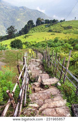 Pathway And Paddy Field, Himalayan Foreland, Nepal Himalayas
