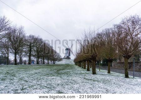 Bruges Windmill Park