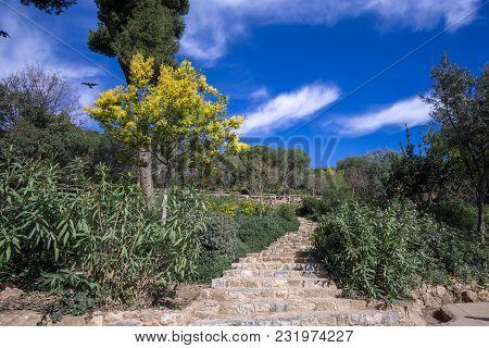 Guell Park Scenery