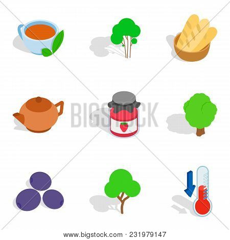 Herbal Infusion Icons Set. Isometric Set Of 9 Herbal Infusion Vector Icons For Web Isolated On White