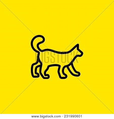 Icon Of Walking Cat. Pet, Animal, Veterinary. Animal Care Concept. Can Be Used For Topics Like Veter