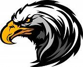 American Eagle Head Mascot Vector Graphic Image poster