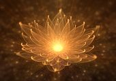 Radiant orange lotus with rays of light, Water Lily, enlightenment or meditation and universe, magic scene, abstract illustration poster