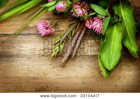 Herbal Background. Herbs over Wood. Treatment Plant. Herbal Medicine