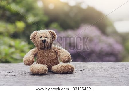 Teddy Bear Sitting On Footpath With Blurry Natural Background, Loneliness Brown Bear Doll Sitting Al
