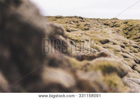 Depth Of Field Over Mossy Rocks Landscape Green Flora Natural Plants Highlands
