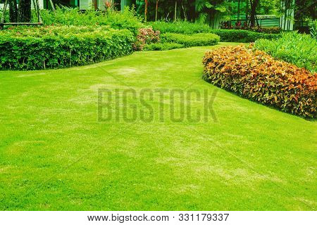 Green Lawns, Front Lawn For Background, Garden Design, Beautiful Shady Landscape, Garden With A Fres