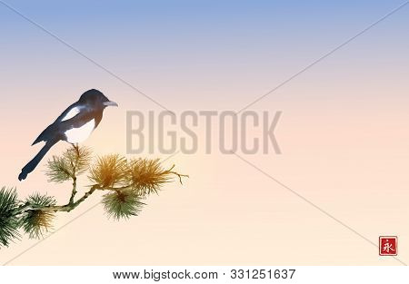 Big Magpie Bird Sand Pine Tree Branch On Sunrise Background. Traditional Oriental Ink Painting Sumi-