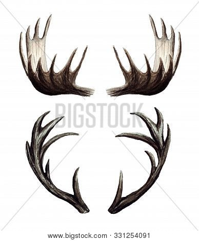 Watercolor Set Of Deer Antlers, Moose Antlers, Hand Painted Illustration Isolated On White